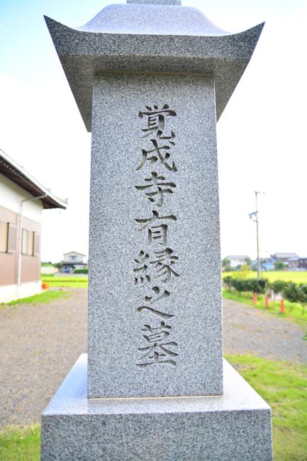 yuuennohaka2